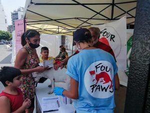 Dopo la riapertura della parte distrutta della città, l'associazione Four Paws ha allestito una tenda per offrire sostegno e prime cure mediche agli animali sopravvissuti all'esplosione. Il cane Scooby è uno di questi (credits: FOURPAWS/HristoVladev)