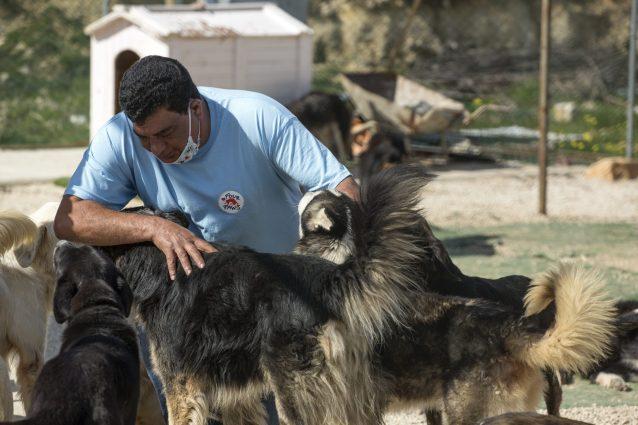 Il veterinario di Four Paws Amir Khalil è un veterano di zone di guerra e colpite da disastri ambientali. (credits: FOURPAWS/HristoVladiv