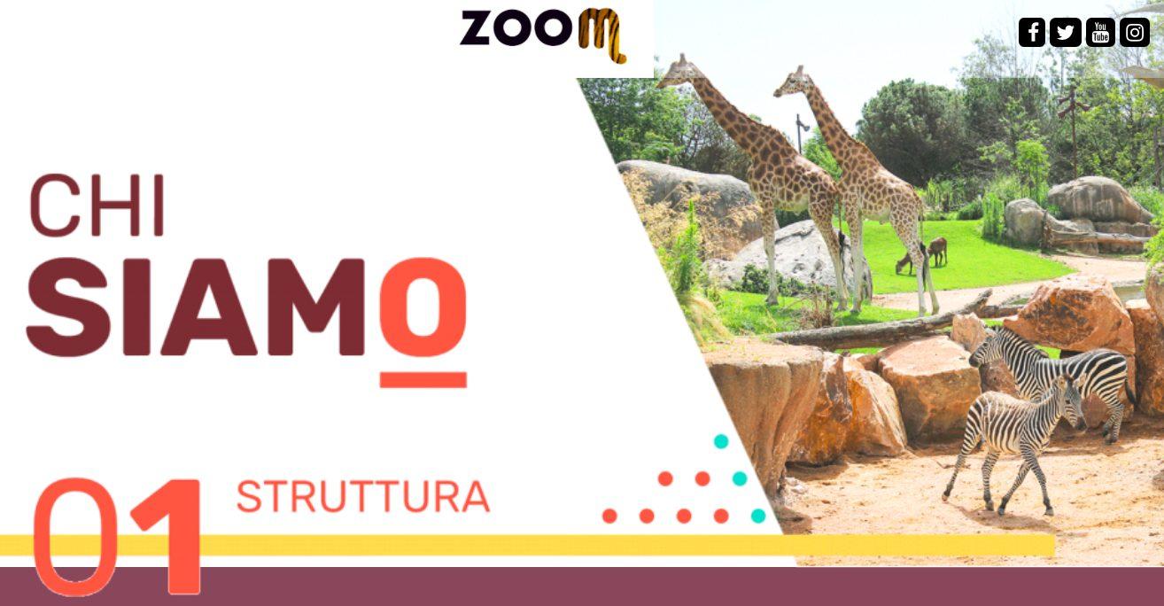 Zoom Torino è un grande bioparco immersivo di 160 mila metri quadrati che ospita 80 specie animali e 10 habitat (credits:sito Zoom)
