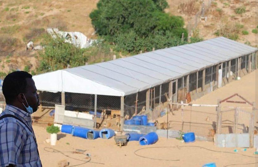 Il rifugio di Salula Animal Rescue (credits:@SalulaAnimalRescue)